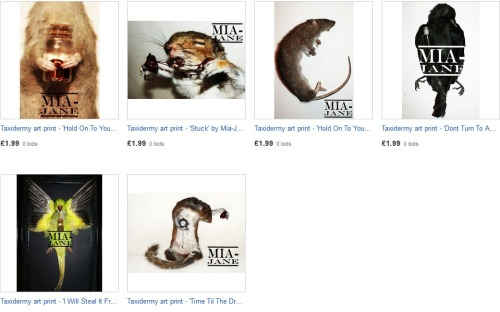 2 DAYS LEFT OF BIDDINGOfficial signed prints of my taxidermy art from £1.99Some of these are the last prints of those specific pieces that I have left so don't miss out if you want one :)http://www.ebay.co.uk/sch/xxxdeadsweetxxx/m.html?_nkw=&_armrs=1&_from=&_ipg=25&_trksid=p3686