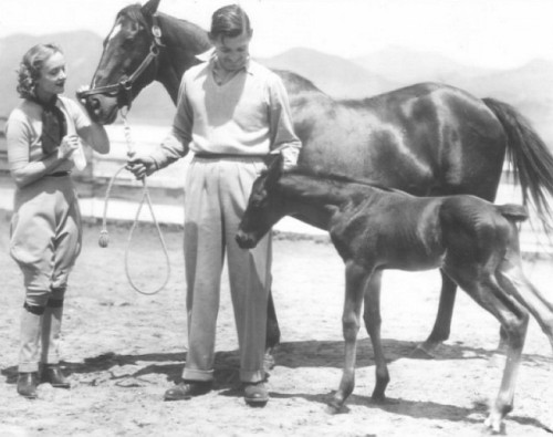 Carole Lombard and Clark Gable enjoy some quality time with their horses. x