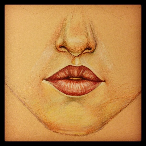 Progress on mouth and nose so far. #wip #constantlyconstance #prismacolor #pencils #mouth #portrait #workinprogress #drawing #illustration