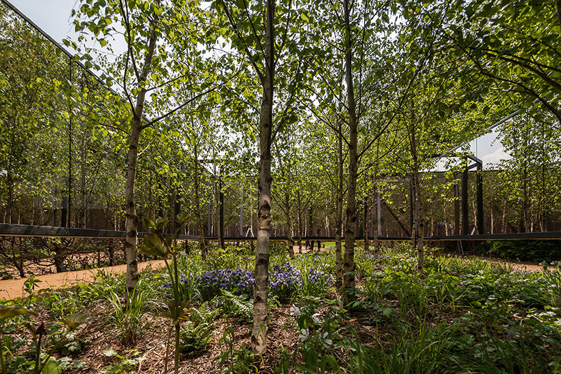 cjwho:  outside-in: the infinite garden by meir lobaton corona + ulli heckmann all images © fabio ferrario