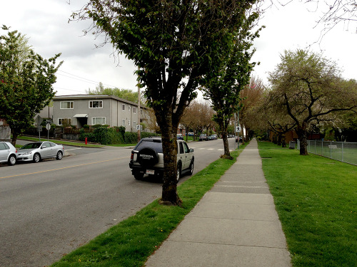 "If Vancouver were to undergo open-heart surgery, Victoria Drive is where the surgeon would make the incision. I've walked it between East Georgia and Broadway a hundred, two hundred times by now. Listened to innumerable songs on its sidewalks on my way to pick up groceries or catch a train. It's more downbeat than Commercial Drive. Elderly Italian lawn bowlers gather in droves at Victoria Park when the rain allows. Further south, dog owners play fetch with their companions at McSpadden, where nearly three years ago I sat and watched an outdoor screening of ""The NeverEnding Story"" by myself, through the haze of marijuana smoke tumbling down its slight incline by the back fence. I've had so many thoughts while walking that street. So many big and little ideas. So many impressions of the direction my life is headed, and reminders to myself that I have no clue, not really. Thoughts about love and passion and right and wrong on loops. Decisions made and lines crossed silently. The weight of a giant box of cereal to get me through the week, battling with two shopping bags and an umbrella, pausing to check my phone at the 1st Avenue intersection, a crosswalk I can never seem to hit at just the right moment. Today I walked to the grocery store for the first time in weeks, picked out my items, put them through the self-scanner, and realized I'd forgotten my wallet. This process, so common at one time, has become alien to me somehow. Since moving to Vancouver I've routinely forgotten at least one item almost every time I leave my apartment. Unless I lay everything out on the bed, unless I take my time with it, I'll leave something behind, too distracted by the voice in my chest screaming, ""You need to be outdoors."" It worries me a bit. I wonder what else I'm capable of forgetting, if these things will become bigger and affect my life more drastically, if I'll begin to forget locations, people, emotions. It's just a wallet, a set of keys, a pair of earphones. But this forgetting has become a small part of who I am. There must be a benefit. In some evolutionary way, my body is forcing me to erase the things I should find familiar by now. Victoria Drive may be a brand new strip of sidewalk one day. I may take it to the store, past the parks, forget where I am, why I was going there. I may check my pockets to make sure everything is in place. But the brand newness will find me, one way or the other."