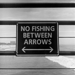 ntruj:  No Fishing Between Arrows