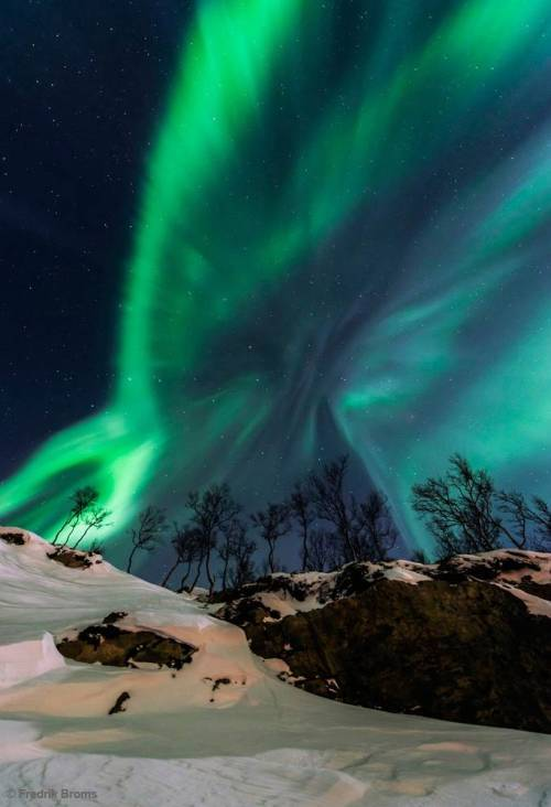 "magicalnaturetour:  ""Solar Storm"" shows an aurora borealis near Tromso, northern Norway. Photo by Fredrik Broms"