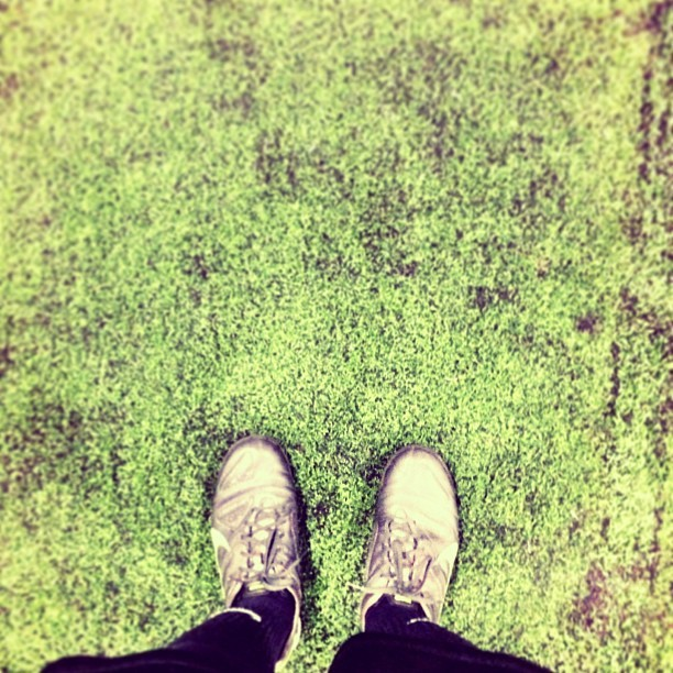 New season, feels good! #soccer http://instagr.am/p/W56B6dyVY8/