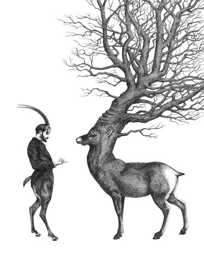 Dan Hillier, At the edge of the woods