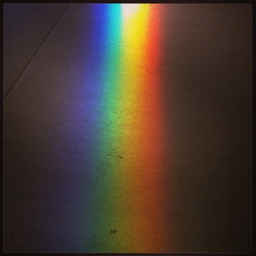 #rainbow #prism #morning #dawn #color