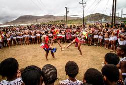 Zulu reed dance, viaCheehan Ng