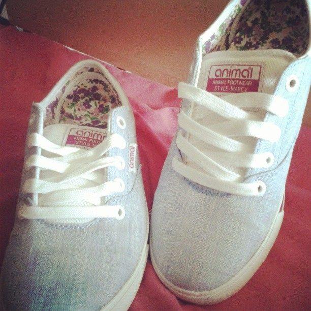 Wooooooo NEW SHOES ! ! ! :-D