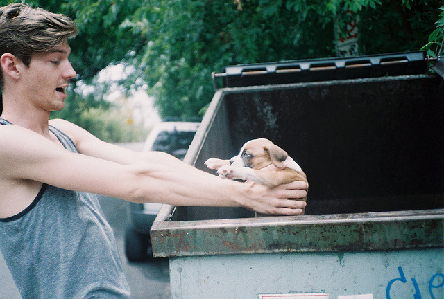 aphelia:  Puppy in da trash by sabrinaislatina on Flickr.