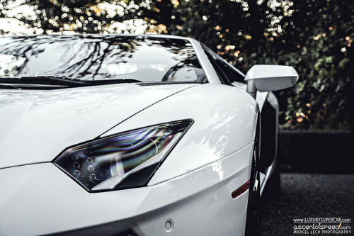 amazingcars:  Aventador by Marcel Lech on Flickr.