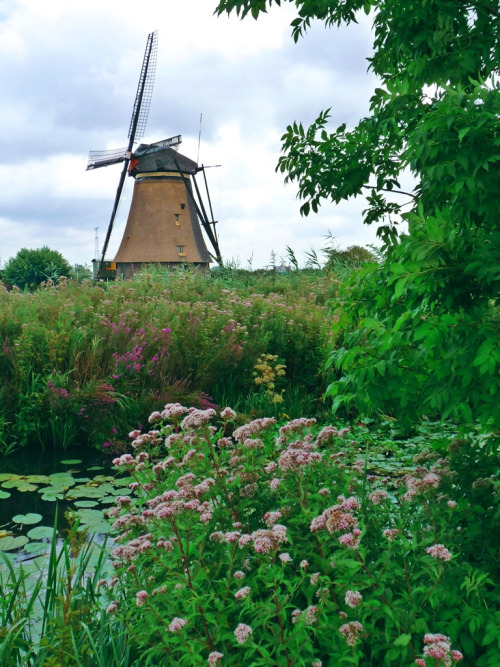 allthingseurope:  Kinderdijk, Netherlands (by STEHOUWER AND RECIO)