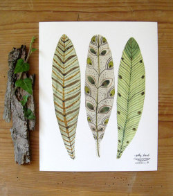 (via bird feathers art giclee print reproduction by GollyBard on Etsy)