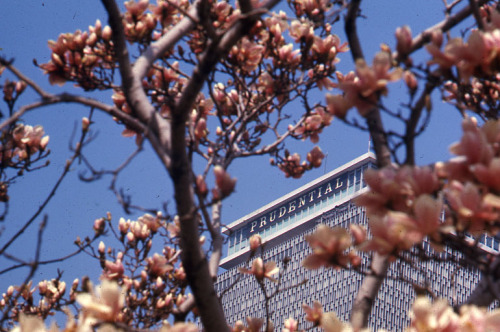 Prudential Building, 1968 April  Peter H. Dreyer slide collection, Collection #9800.007, City of Boston Archives.  This work is free of known copyright restrictions.  Please attribute to City of Boston Archives and credit Peter Dreyer.. For more images from this collection, click here