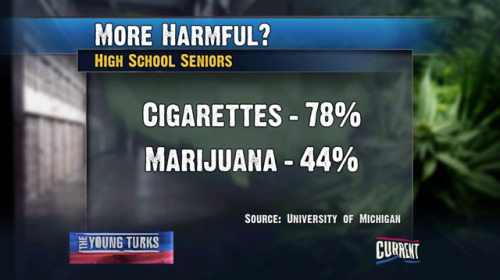 Cigarettes vs Marijuana - Which Is More Harmful? Poll of High School Seniors