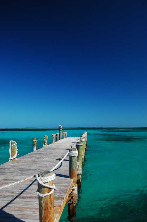 nosens:  walkway to paradise (by K!DDEE)