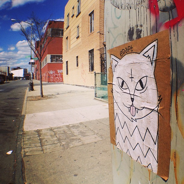 Edapt in Bushwick / Photo by Classic
