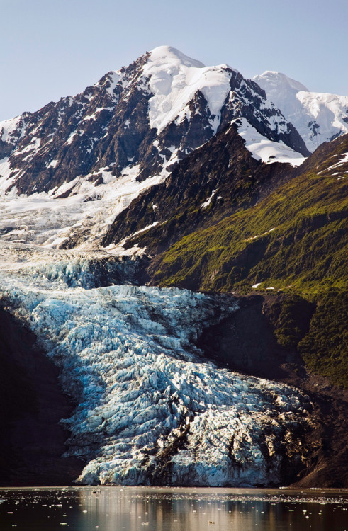 refluent:  College Fjord Glacier (by David Schroeder)