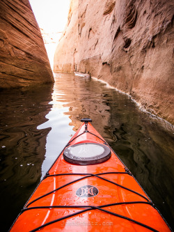 wendesgray:  joshschutz:  Kayaking slots canyons!