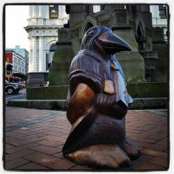 Pingwens of Dunedin #oamarusteampunkroadtrp #penguin #art #sculpture (at Dunedin, New Zealand)
