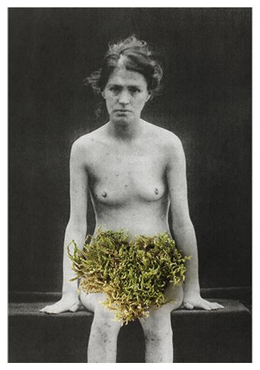 "Paula Muhr - Double Flowers (2010-2012) ""In ""Studies on Hysteria"", published together with Freud in 1895, Joseph Breuer labeled hysterics as ""the flowers of mankind, as sterile, no doubt, but as beautiful as double flowers"". In cultivated flowers, doubling comes from the replacement of the stamens by petals, producing the effect of flowers within flowers. Like a double flower, according to Breuer, the hysteric is the product of luxury and cultivation, a form of seductive female abnormality.  The work is based on reinterpretation of medical photographs of women from the end of 19th and the beginning of 20th century. The women depicted in the images are predominantly hysterics. The historical photographs were taken from various medical books, magazines and journals, where they played the role of unambiguous evidence of illness and abnormality. They were juxtaposed with a number of different objects, plants and animals, which directly refer to Dutch still life paintings and their precisely codified symbolic meanings. Through my intervention, the appropriated medical portraits, which aimed at providing pure visibility and immobilizing the elusive symptoms of madness and related diseases, are destabilised in their original function. Each of the specific foreign elements were chosen in order to overturn the primary medical mode of the illustrations as portraits of pathology, with which the individual had been turned into nothing more than the bearer of pathonomic symptoms. These assemblages, constructed in ways that emphasise the respective idiosyncracies of the individual female portraits, were then rephotographed. Owing to the slight transition in symbolic meaning, this work aims to problematise the apparently stable visual boundary established within the medical context between the ""normal"" viewer and the ""pathognomic"" patient."""