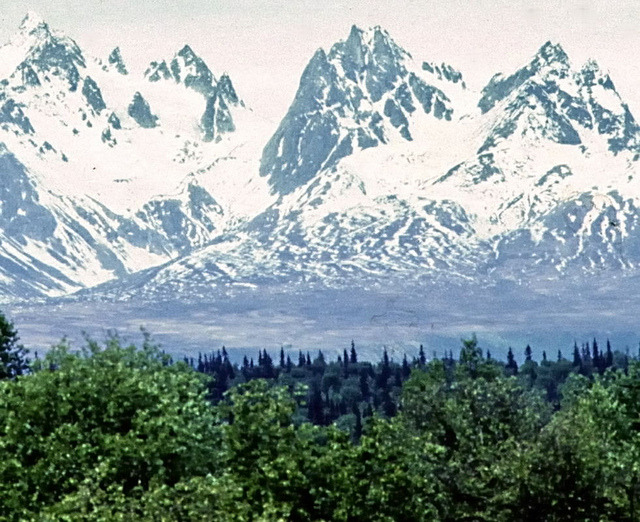 Alaska Range - Denali National Park on Flickr.  Click Image for Lightbox View.