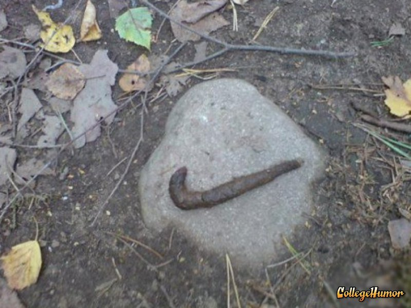 collegehumor:  Nike Poop  Just poo it.