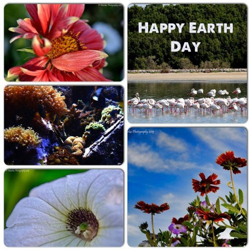 Happy Earth Day! #earthday