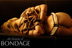 the-beauty-of-bondage:  warm atmosphere for shibari session on the sofa