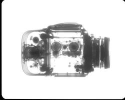 Hasselblad X-Ray by  Nick Veasey