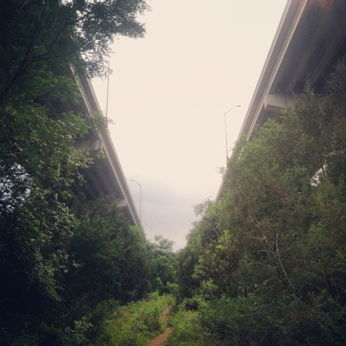 #420view  (at Barton Creek Greenbelt)