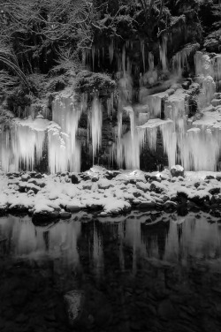 snow photography winter cold Black and White MY EDIT landscape ice b&w water dark view nature forest reflection bw branches b&w photography