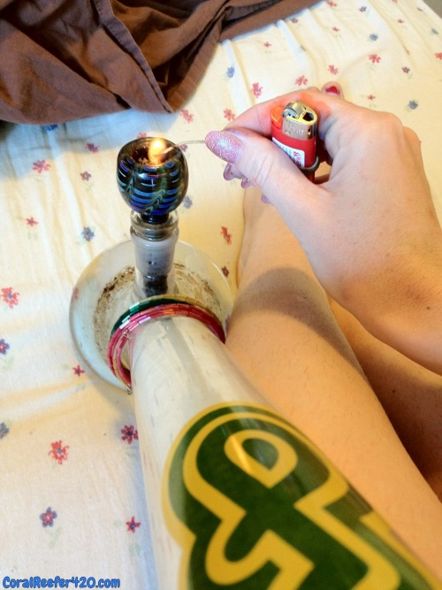 coralreefer420:  Goodnight Reefers.