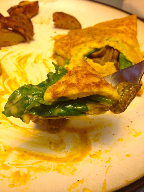 Tofu Omelettes, a success!I finally found a tofu based omelette recipe that turned out! I used this recipe from Fat Free…View Post