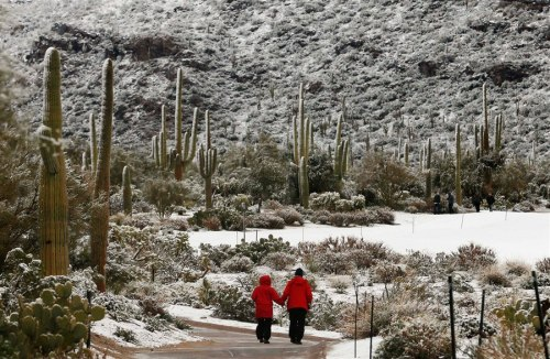 Snow-covered cacti: Golf championship stopped due to freak Arizona winter storm (Photo: Ross D. Franklin / AP) Tournament volunteers walk along the golf course after a snow storm suspended play for the day during the Match Play Championship golf tournament, on Feb. 20, in Marana, Ariz. Play was suspended for the day.  Read the complete story.