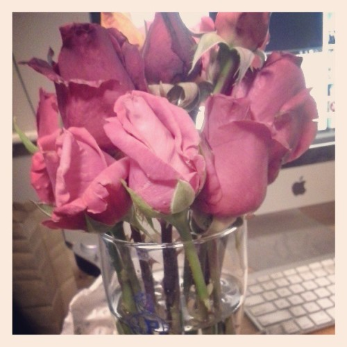When besties brings roses you know you got it right. <3 @cwangxoxo!