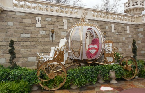 Cinderella's Carriage at True Love Week. The Photopass Line was a little too ridiculous for me to wait for a picture with it, so this is the best I could get.