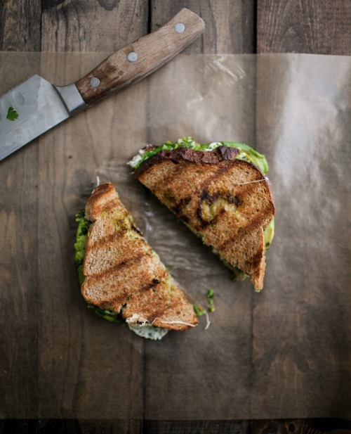 in-my-mouth:  Avocado, Mozzarella, and Jalapeño Chimichurri Grilled Sandwiches