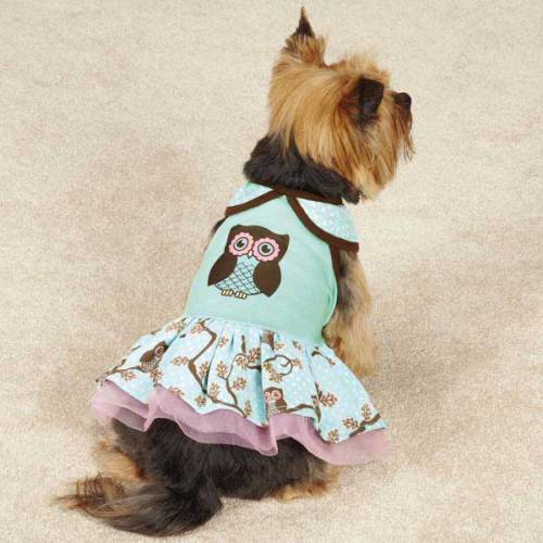 A new dress in our Spring Collection- This dog dress is made from soft knit fabric. An adorable owl is printed on the bodice and the ruffled skirt is made from owl print fabric. So cute!