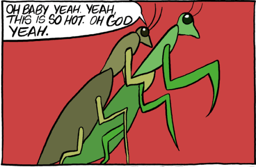 thefrogman:  Saturday Morning Breakfast Cereal by Zach Wiener [website] [h/t: bluedogeyes]