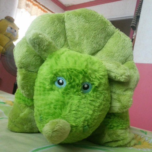 Meet dino! My sleeping buddy :) #Siesta