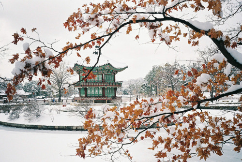 Hyangwonjeong in Winter by Seiman C on Flickr.