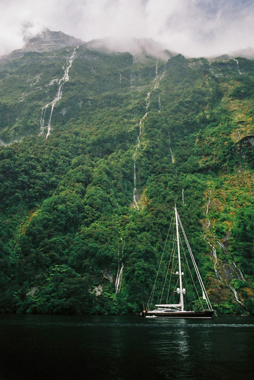 italdred:  Milford Sound, New Zealand (2006) (by Larry Carr)