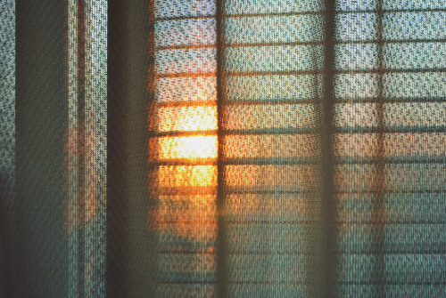lensblr-network:  Winter window.  by suisounonou.tumblr.com