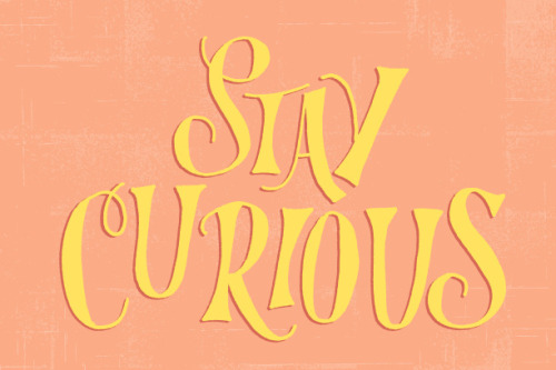 betype:  Stay Curious by ecerdeiros on Flickr.Get inspired on Betype.co