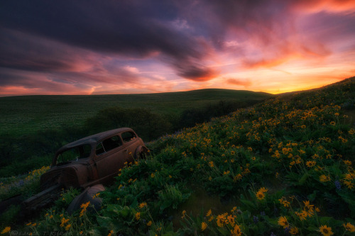 robot-heart:  ~Days Gone Bye~ (by Lance Rudge)