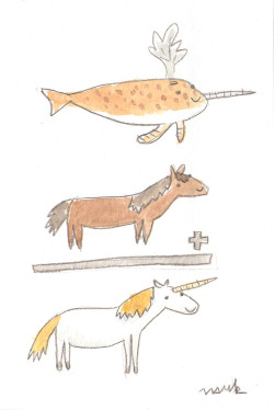 a narwhal plus a horse makes a unicorn