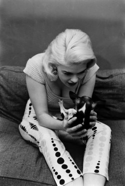 life:  Not published in LIFE. Jayne Mansfield with her pet Chihuahua, at home in Hollywood, 1956. See more photos here.  (Peter Stackpole—Time & Life Pictures/Getty Images)