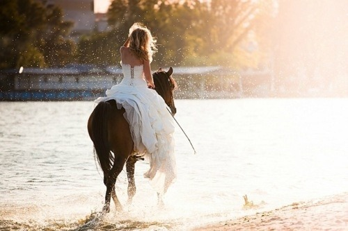 lazycaterpillar:  Wedding Photography #1913541 | Weddbook on We Heart It. http://weheartit.com/entry/55477018/via/DoraS