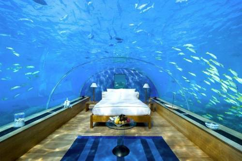 [my future] Underwater bedroom in the Maldives