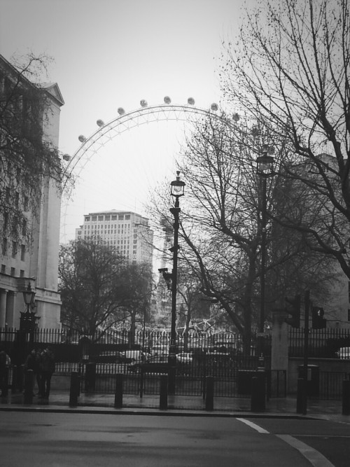London Eye desde Downing St.